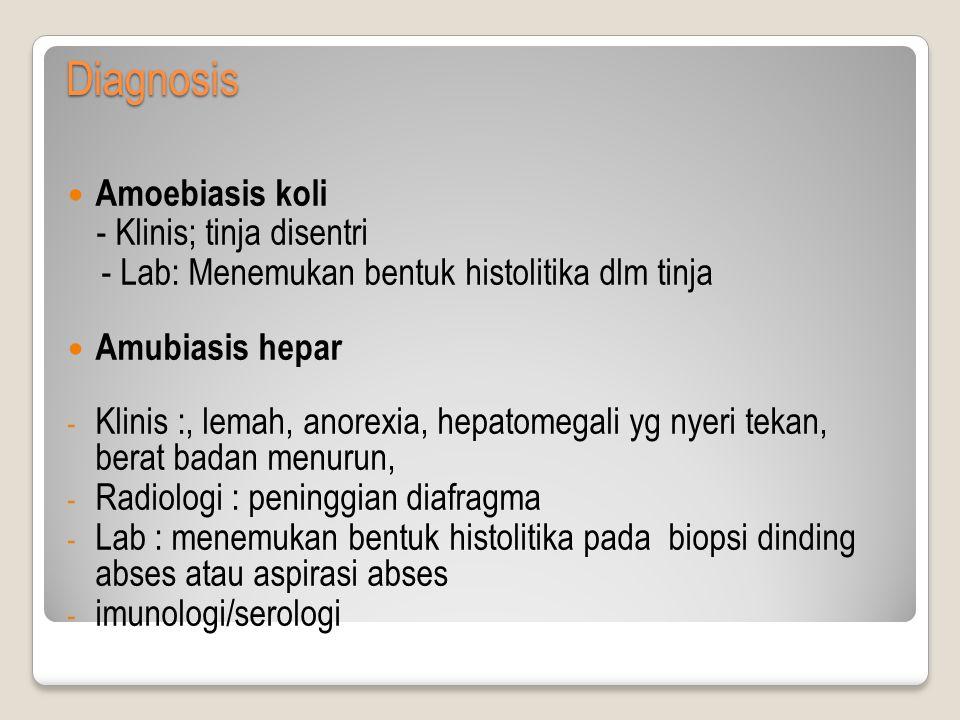 Diagnosis Amoebiasis koli - Klinis; tinja disentri - Lab: Menemukan bentuk histolitika dlm tinja Amubiasis hepar - Klinis :, lemah, anorexia, hepatomegali yg nyeri tekan, berat badan menurun, - Radiologi : peninggian diafragma - Lab : menemukan bentuk histolitika pada biopsi dinding abses atau aspirasi abses - imunologi/serologi