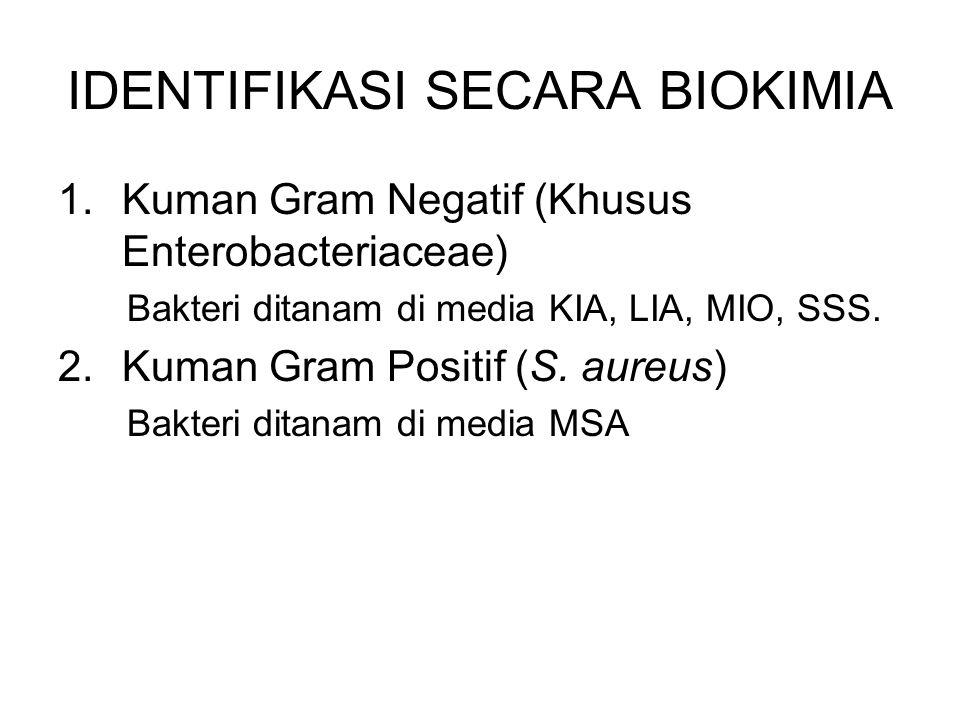 IDENTIFIKASI SECARA BIOKIMIA 1.Kuman Gram Negatif (Khusus Enterobacteriaceae) Bakteri ditanam di media KIA, LIA, MIO, SSS. 2.Kuman Gram Positif (S. au