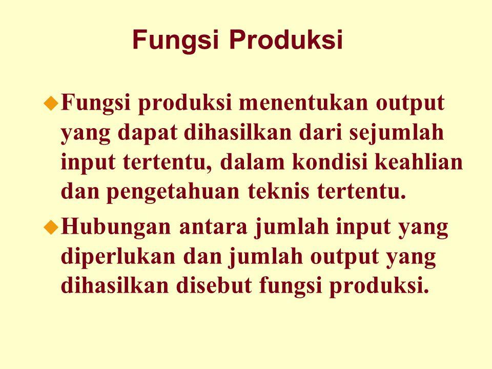 Dinnul Alfian Akbar 2007 Fungsi Produksi u Fungsi produksi menentukan output yang dapat dihasilkan dari sejumlah input tertentu, dalam kondisi keahlian dan pengetahuan teknis tertentu.