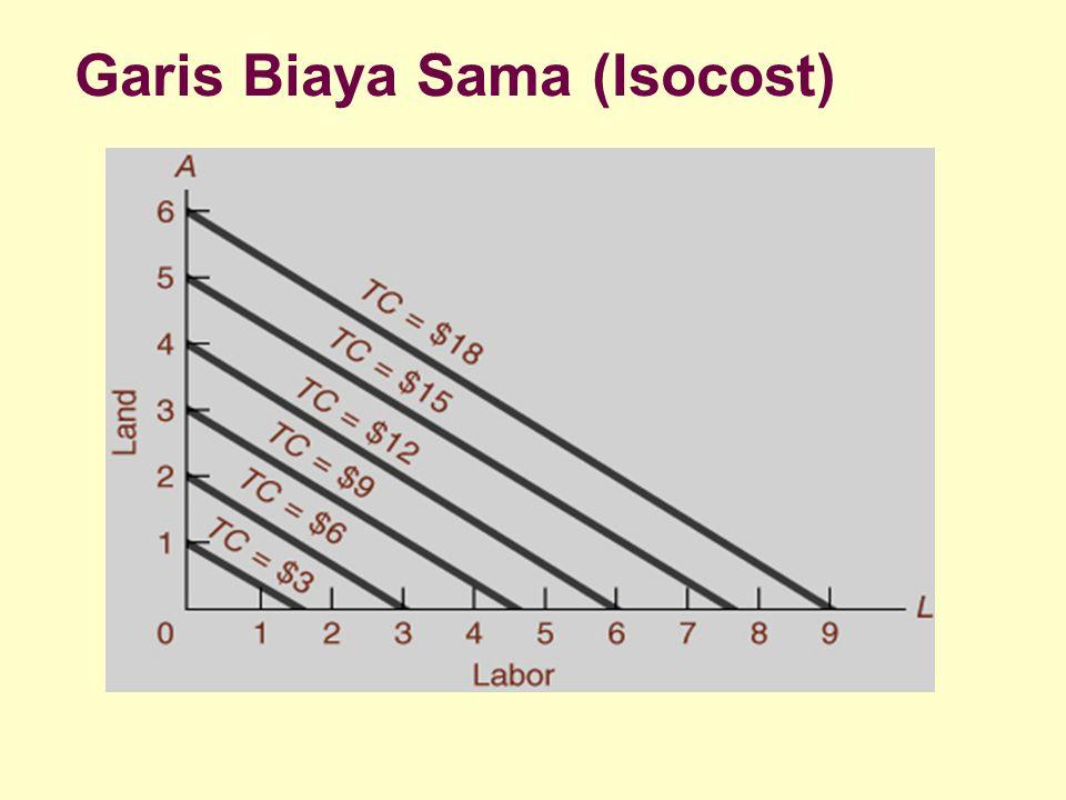 Dinnul Alfian Akbar 2007 Garis Biaya Sama (Isocost)