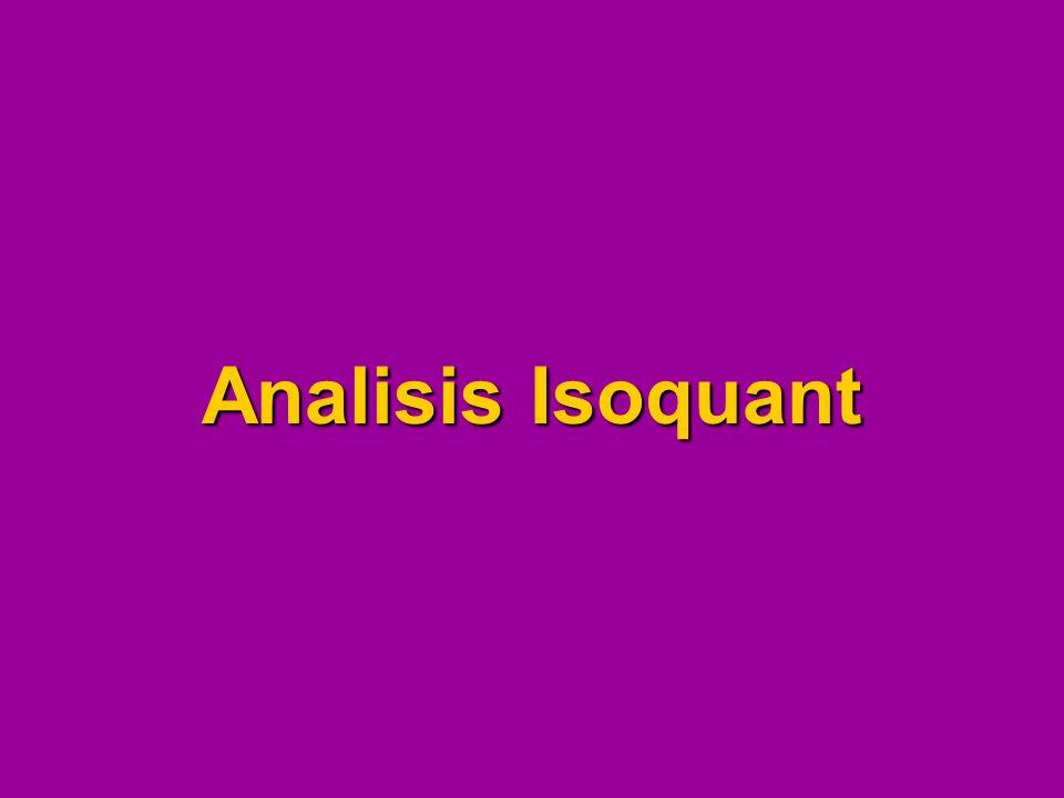 Analisis Isoquant