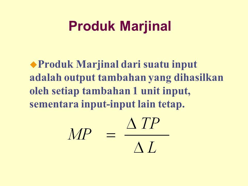 Dinnul Alfian Akbar 2007 Produk Marjinal u Produk Marjinal dari suatu input adalah output tambahan yang dihasilkan oleh setiap tambahan 1 unit input, sementara input-input lain tetap.