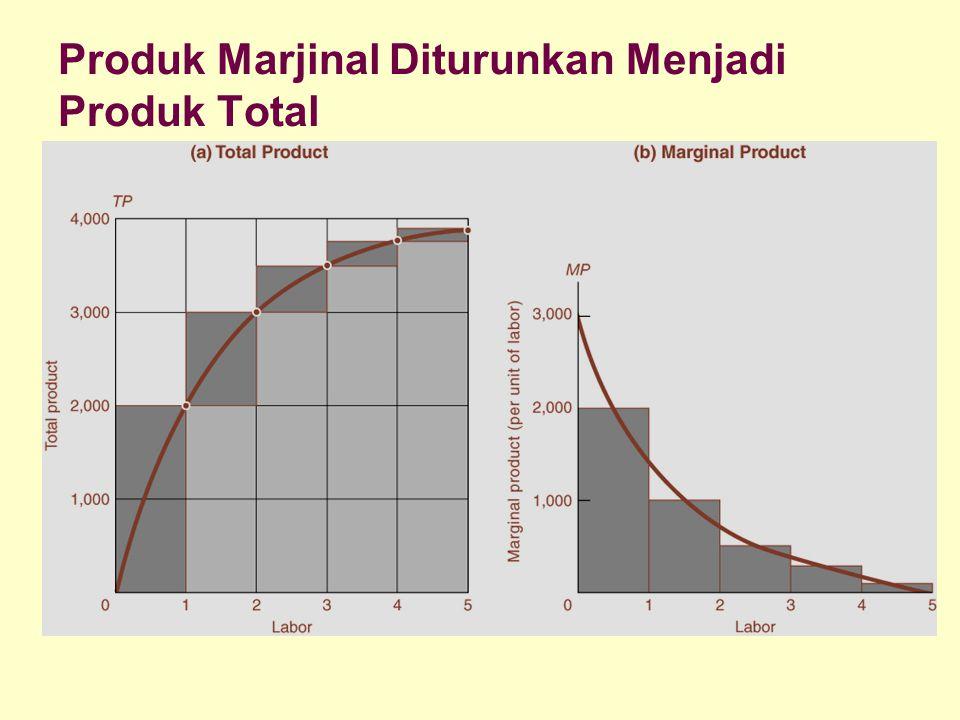 Dinnul Alfian Akbar 2007 Produk Marjinal Diturunkan Menjadi Produk Total