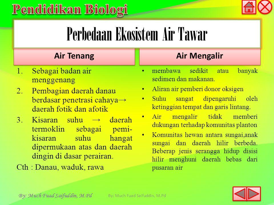 By: Much Fuad Saifuddin, M.Pd Air Tenang 1.Sebagai badan air menggenang 2.Pembagian daerah danau berdasar penetrasi cahaya→ daerah fotik dan afotik 3.