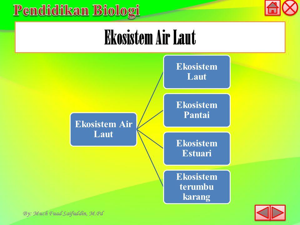 Ekosistem Air Laut Ekosistem Laut Ekosistem Pantai Ekosistem Estuari Ekosistem terumbu karang Ekosistem Air Laut By: Much Fuad Saifuddin, M.Pd