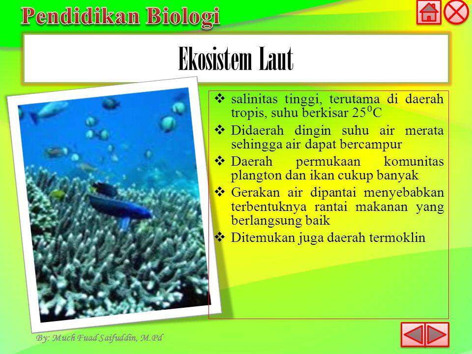 Ekosistem Laut By: Much Fuad Saifuddin, M.Pd  salinitas tinggi, terutama di daerah tropis, suhu berkisar 25 ⁰ C  Didaerah dingin suhu air merata seh