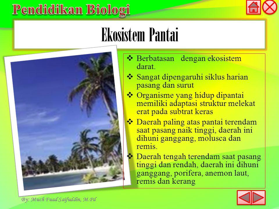 Ekosistem Pantai By: Much Fuad Saifuddin, M.Pd  Berbatasan dengan ekosistem darat.  Sangat dipengaruhi siklus harian pasang dan surut  Organisme ya