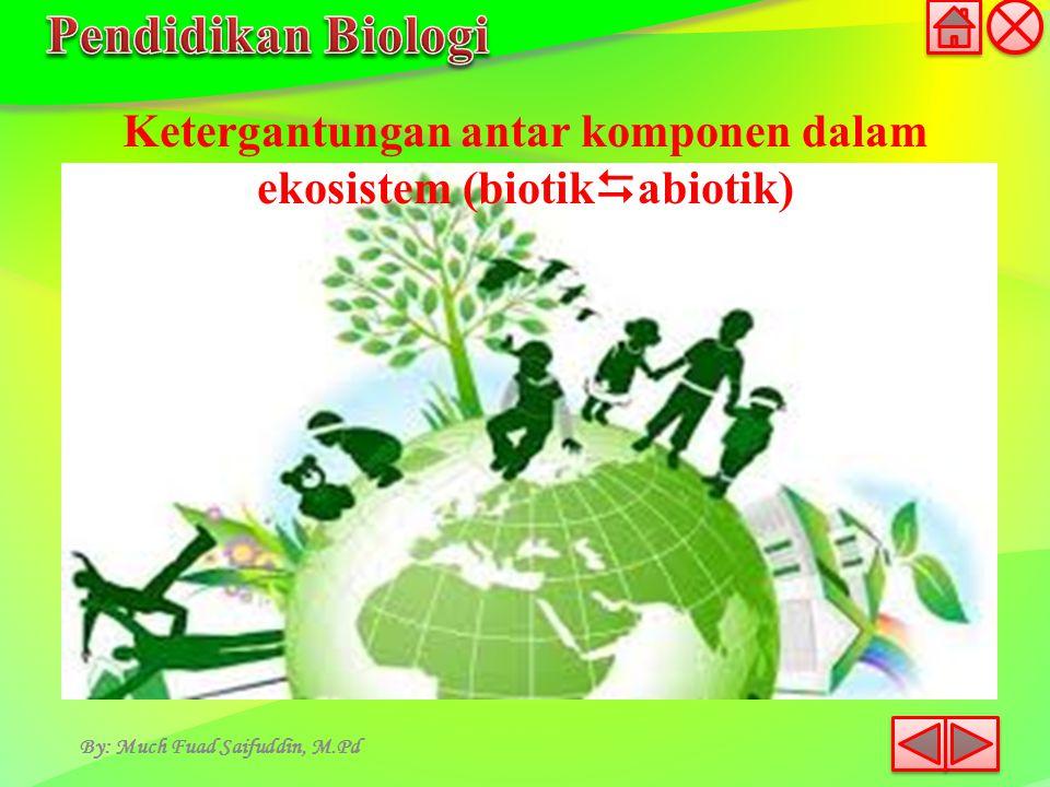 By: Much Fuad Saifuddin, M.Pd Ketergantungan antar komponen dalam ekosistem (biotik  abiotik)