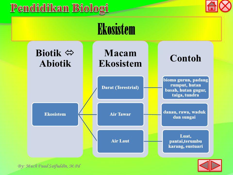 Ekosistem By: Much Fuad Saifuddin, M.Pd Contoh Macam Ekosistem Biotik  Abiotik EkosistemDarat (Terestrial) bioma gurun, padang rumput, hutan basah, h