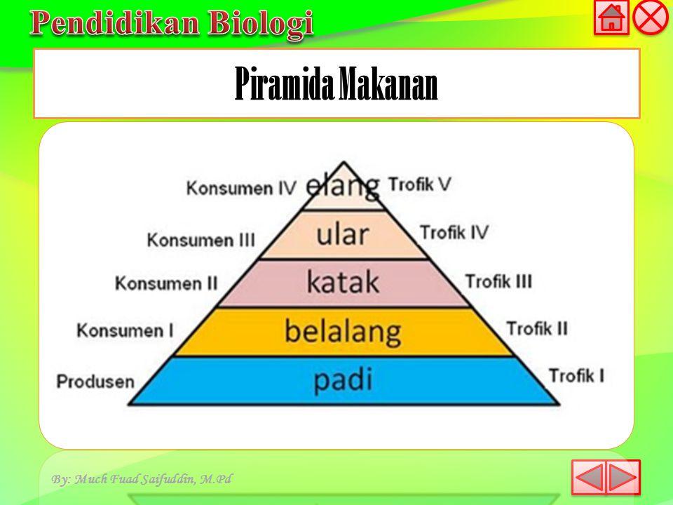 Piramida Makanan By: Much Fuad Saifuddin, M.Pd
