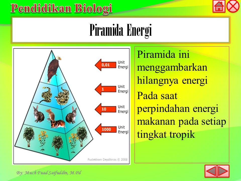 Piramida Energi By: Much Fuad Saifuddin, M.Pd Piramida ini menggambarkan hilangnya energi Pada saat perpindahan energi makanan pada setiap tingkat tro