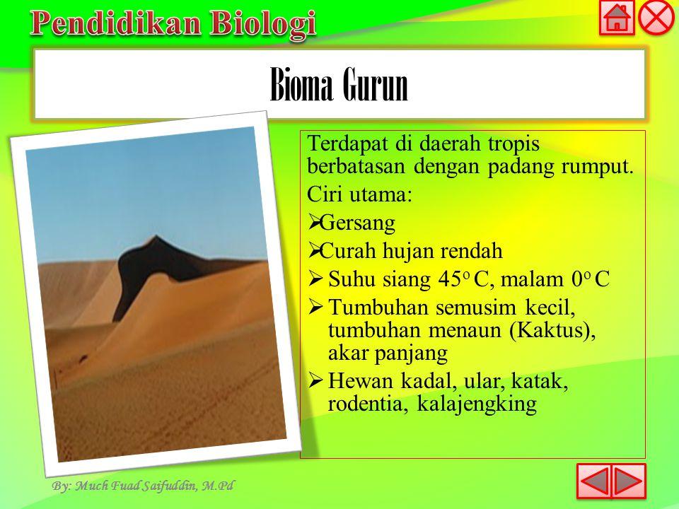 Bioma Gurun By: Much Fuad Saifuddin, M.Pd Terdapat di daerah tropis berbatasan dengan padang rumput. Ciri utama:  Gersang  Curah hujan rendah  Suhu