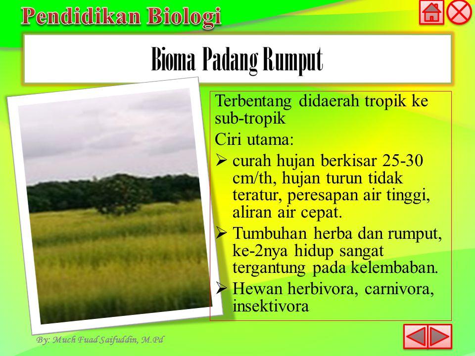 Bioma Padang Rumput By: Much Fuad Saifuddin, M.Pd Terbentang didaerah tropik ke sub-tropik Ciri utama:  curah hujan berkisar 25-30 cm/th, hujan turun