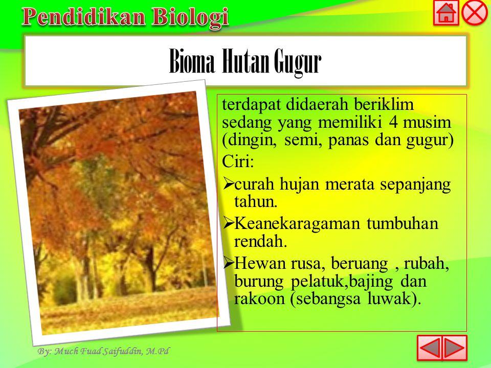Bioma Taiga By: Much Fuad Saifuddin, M.Pd Ciri:  terdapat dibagian bumi utara, pegunungan tropik suhu dimusim dingin rendah  umumnya merupakan hutan yang tesusun tumbuhan satu spesies (konifer), semak dan sedikit sekali tumbuhan basah.