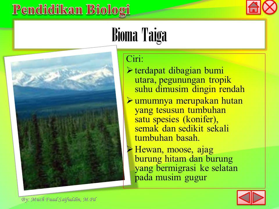Bioma Taiga By: Much Fuad Saifuddin, M.Pd Ciri:  terdapat dibagian bumi utara, pegunungan tropik suhu dimusim dingin rendah  umumnya merupakan hutan