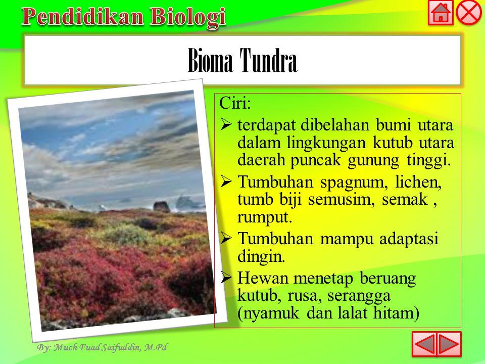 Bioma Tundra By: Much Fuad Saifuddin, M.Pd Ciri:  terdapat dibelahan bumi utara dalam lingkungan kutub utara daerah puncak gunung tinggi.  Tumbuhan