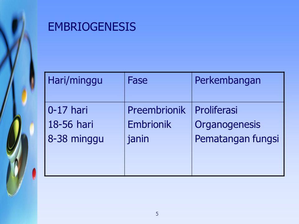5 EMBRIOGENESIS Hari/mingguFasePerkembangan 0-17 hari 18-56 hari 8-38 minggu Preembrionik Embrionik janin Proliferasi Organogenesis Pematangan fungsi
