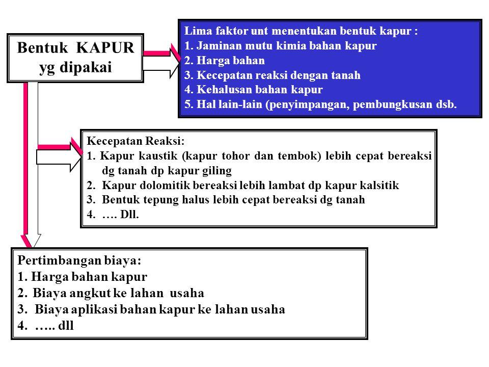 Bentuk KAPUR yg dipakai Lima faktor unt menentukan bentuk kapur : 1.