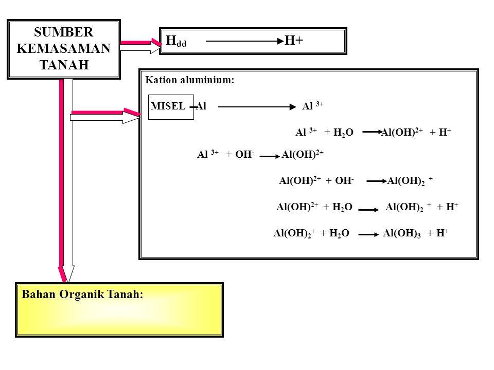 Kation aluminium: MISEL Al Al 3+ Al 3+ + H 2 O Al(OH) 2+ + H + Al 3+ + OH - Al(OH) 2+ Al(OH) 2+ + OH - Al(OH) 2 + Al(OH) 2+ + H 2 O Al(OH) 2 + + H + Al(OH) 2 + + H 2 O Al(OH) 3 + H + SUMBER KEMASAMAN TANAH H dd H+ Bahan Organik Tanah: