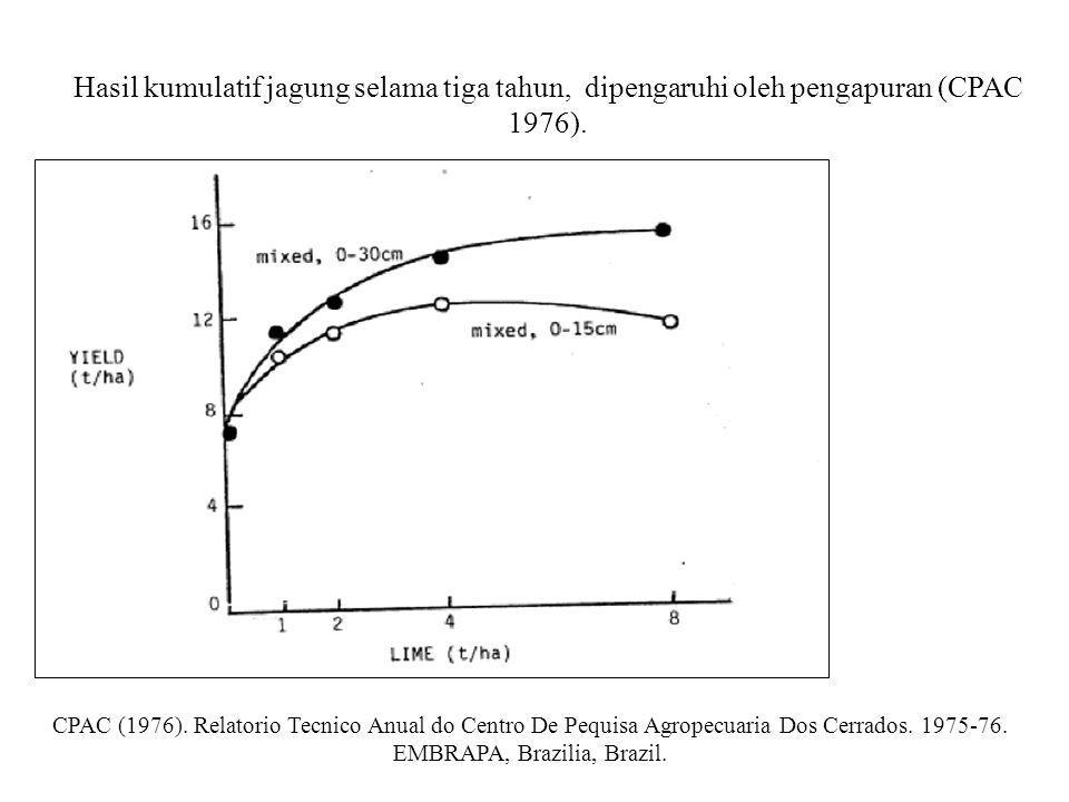 Hasil kumulatif jagung selama tiga tahun, dipengaruhi oleh pengapuran (CPAC 1976).