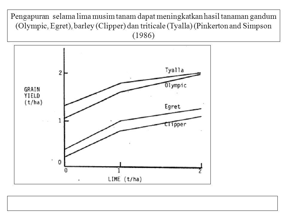 Pengapuran selama lima musim tanam dapat meningkatkan hasil tanaman gandum (Olympic, Egret), barley (Clipper) dan triticale (Tyalla) (Pinkerton and Simpson (1986)