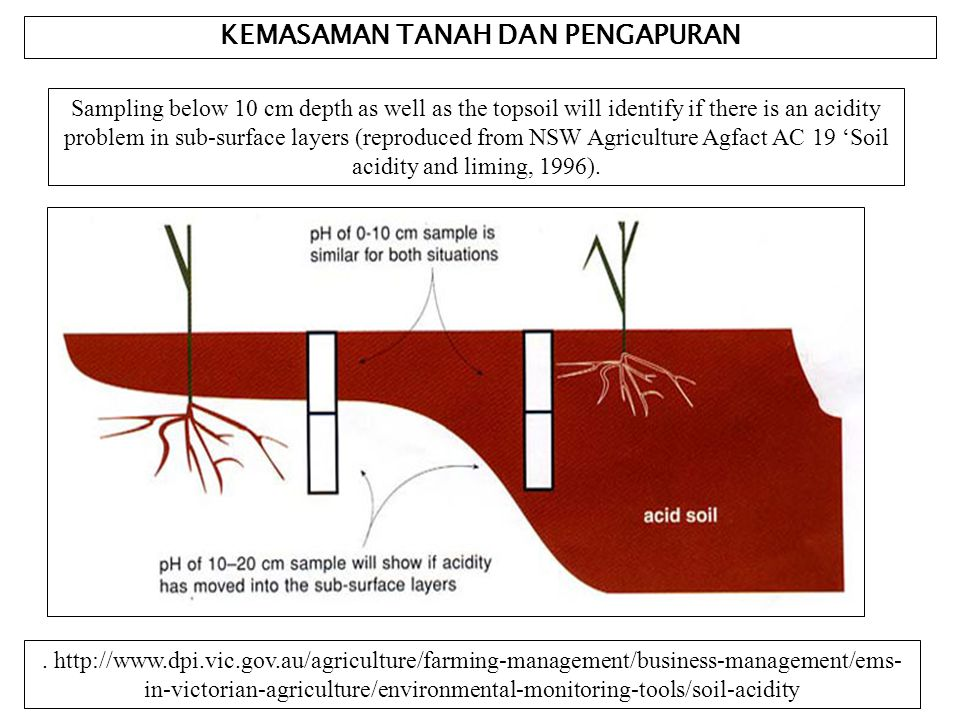 KEMASAMAN TANAH DAN PENGAPURAN Sampling below 10 cm depth as well as the topsoil will identify if there is an acidity problem in sub-surface layers (reproduced from NSW Agriculture Agfact AC 19 'Soil acidity and liming, 1996)..