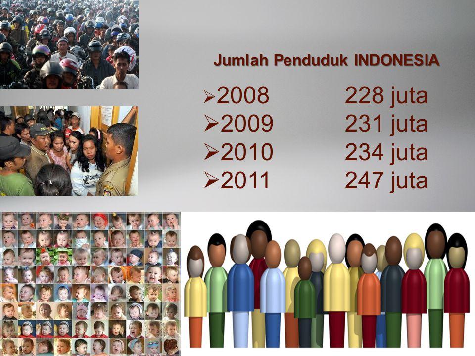 Idham Cholid Jumlah Penduduk INDONESIA  2008228 juta  2009231 juta  2010234 juta  2011247 juta