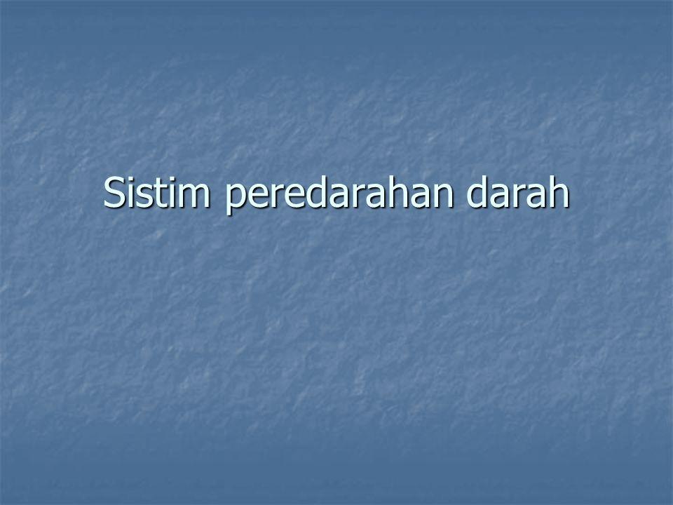 Peryarafan Jantung Parasymphatis Parasymphatis N.Vagus N.Vagus Symphatis Symphatis N.Paravertebralis N.Paravertebralis