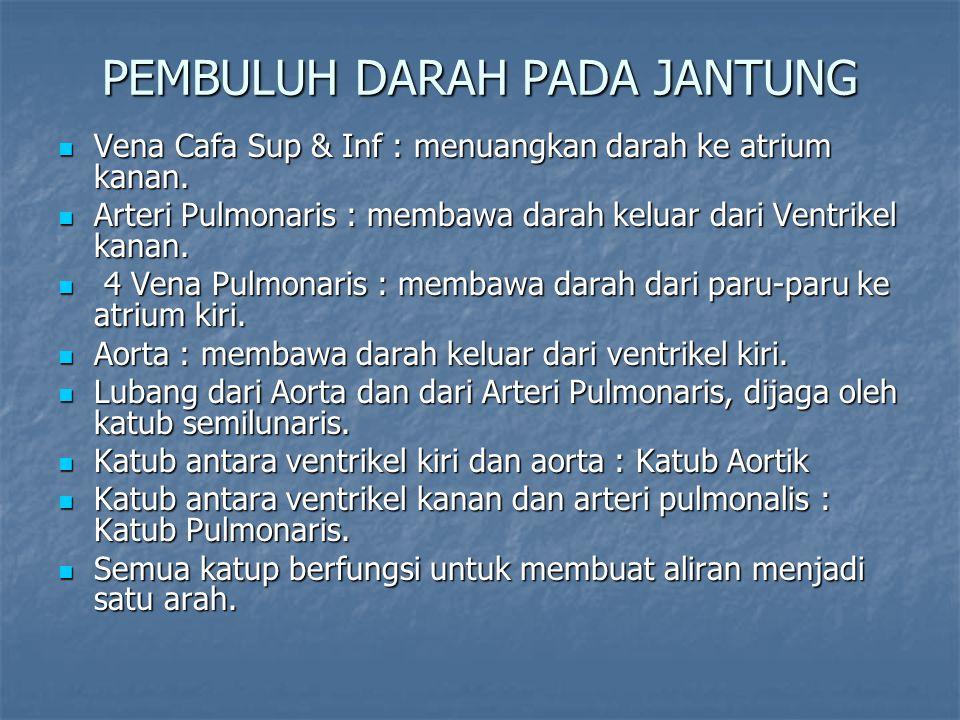 PEMBULUH DARAH PADA JANTUNG Vena Cafa Sup & Inf : menuangkan darah ke atrium kanan. Vena Cafa Sup & Inf : menuangkan darah ke atrium kanan. Arteri Pul