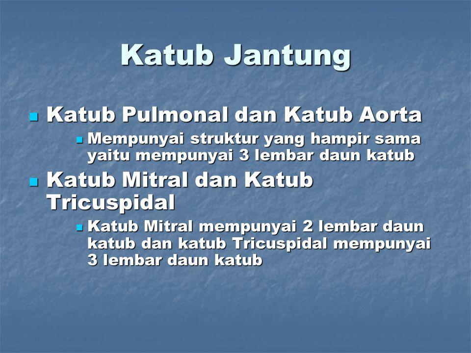Katub Jantung Katub Pulmonal dan Katub Aorta Katub Pulmonal dan Katub Aorta Mempunyai struktur yang hampir sama yaitu mempunyai 3 lembar daun katub Me