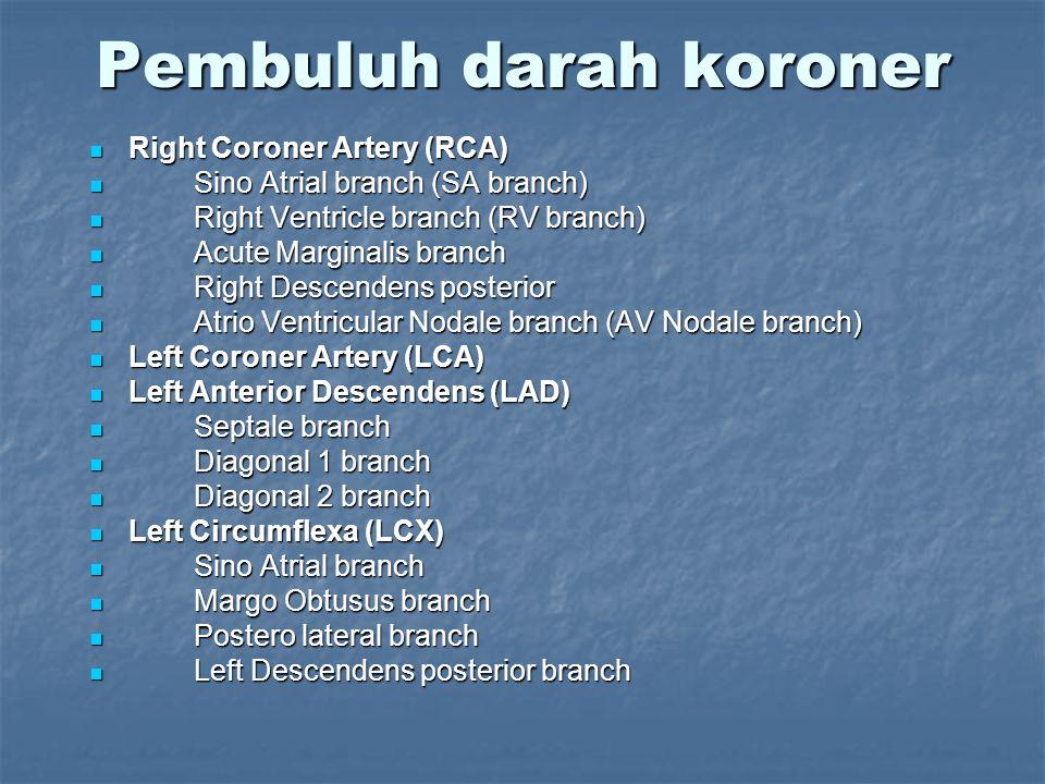 Pembuluh darah koroner Right Coroner Artery (RCA) Right Coroner Artery (RCA) Sino Atrial branch (SA branch) Sino Atrial branch (SA branch) Right Ventr