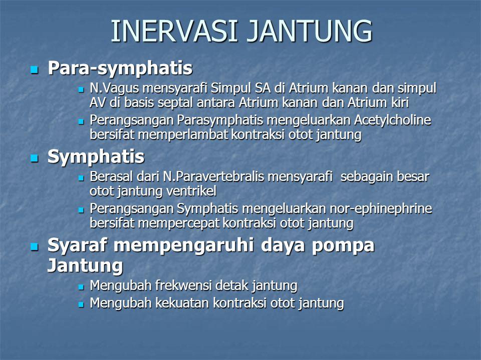INERVASI JANTUNG Para-symphatis Para-symphatis N.Vagus mensyarafi Simpul SA di Atrium kanan dan simpul AV di basis septal antara Atrium kanan dan Atri