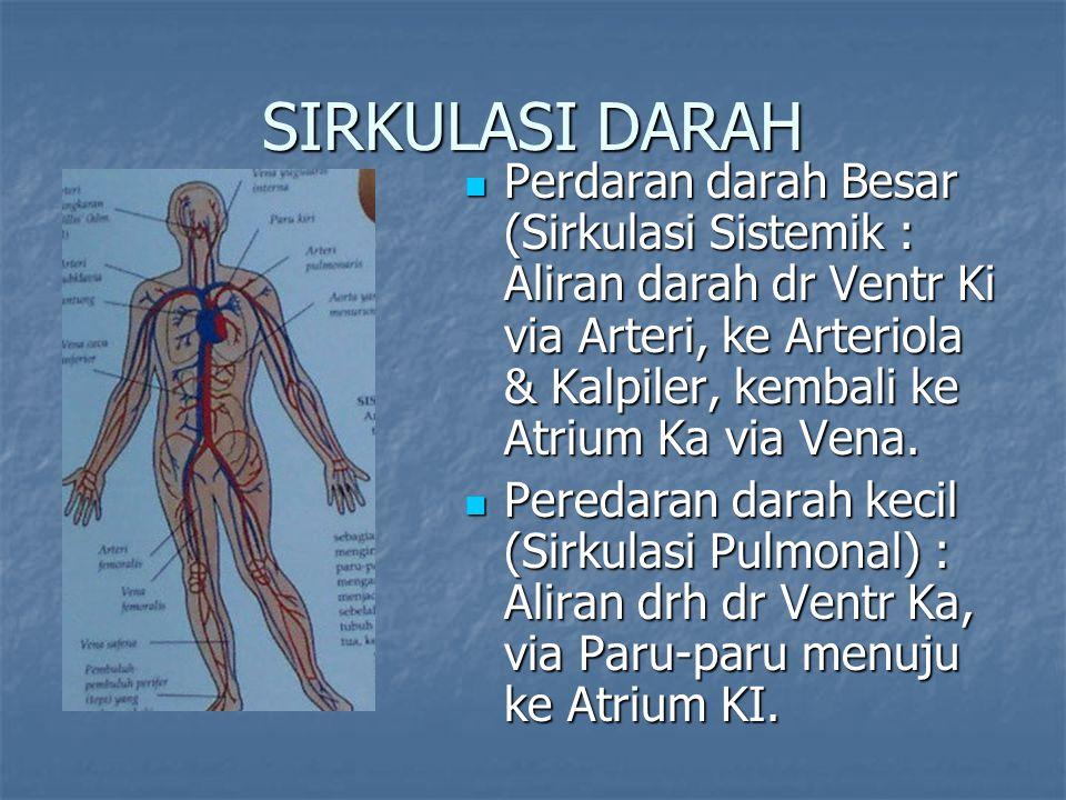 SIRKULASI DARAH TUBUH SIRKULASI DARAH KORONER SIRKULASI DARAH KORONER Darah masuk ke A.Coronaria RCA dan LCA pada fase Diastolis kemudian kembali melalui vena Thebesian ke Jantung kanan Darah masuk ke A.Coronaria RCA dan LCA pada fase Diastolis kemudian kembali melalui vena Thebesian ke Jantung kanan SIRKULASI DARAH PENDEK SIRKULASI DARAH PENDEK Atrium kanan – Ventrikel kanan – A.Pulmonalis - Paru Atrium kanan – Ventrikel kanan – A.Pulmonalis - Paru Paru – V.Pulmonalis - Atrium kiri – Ventrikel kiri Paru – V.Pulmonalis - Atrium kiri – Ventrikel kiri Sirkulasi ini normal ditempuh dalam tempo 15 detik SIRKULASI DARAH BESAR SIRKULASI DARAH BESAR Ventrikel kiri – Aorta – A.Carotis dan A.Vertebralis –Sirkulus Willisi – Otak Ventrikel kiri – Aorta – A.Carotis dan A.Vertebralis –Sirkulus Willisi – Otak Otak – V.Carotis dan V.Vertebralis – V.Jugularis – V.Cava Superior - Atrium kanan Otak – V.Carotis dan V.Vertebralis – V.Jugularis – V.Cava Superior - Atrium kanan Aorta – A.Brachialis Dextra Sinistra – Extremitas atas – dan system vena – V.Brachialis – Atrium kanan Aorta – A.Brachialis Dextra Sinistra – Extremitas atas – dan system vena – V.Brachialis – Atrium kanan Aorta – A.Mesenterica – Organ Usus / Gastrointestinal – V.Hepatica dan V.Mesenterica – Vena Cava inferior – Atrium kanan Aorta – A.Mesenterica – Organ Usus / Gastrointestinal – V.Hepatica dan V.Mesenterica – Vena Cava inferior – Atrium kanan Aorta - A.Renalis – Ginjal – V.Renalis – V.Cava inferior – Atrium kanan Aorta - A.Renalis – Ginjal – V.Renalis – V.Cava inferior – Atrium kanan Aorta – A.Iliaca Superior – Extremitas bawah – V.Iliaca – V.Cava inferior – Atrium kanan.