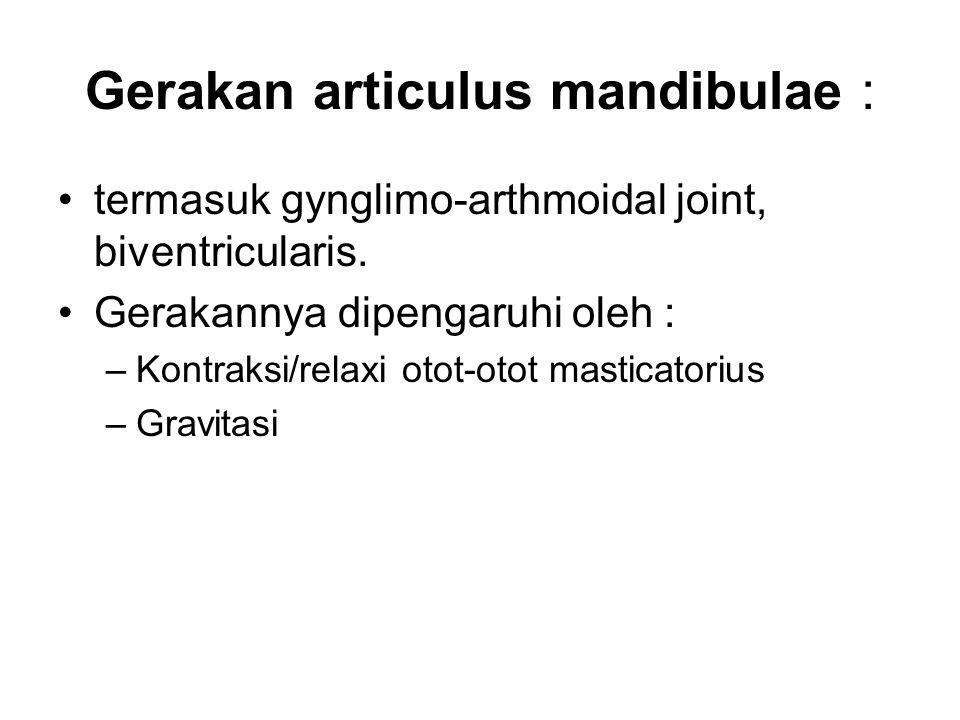 Gerakan articulus mandibulae : termasuk gynglimo-arthmoidal joint, biventricularis. Gerakannya dipengaruhi oleh : –Kontraksi/relaxi otot-otot masticat