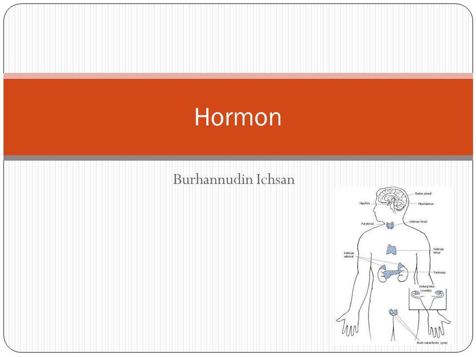 Burhannudin Ichsan Hormon