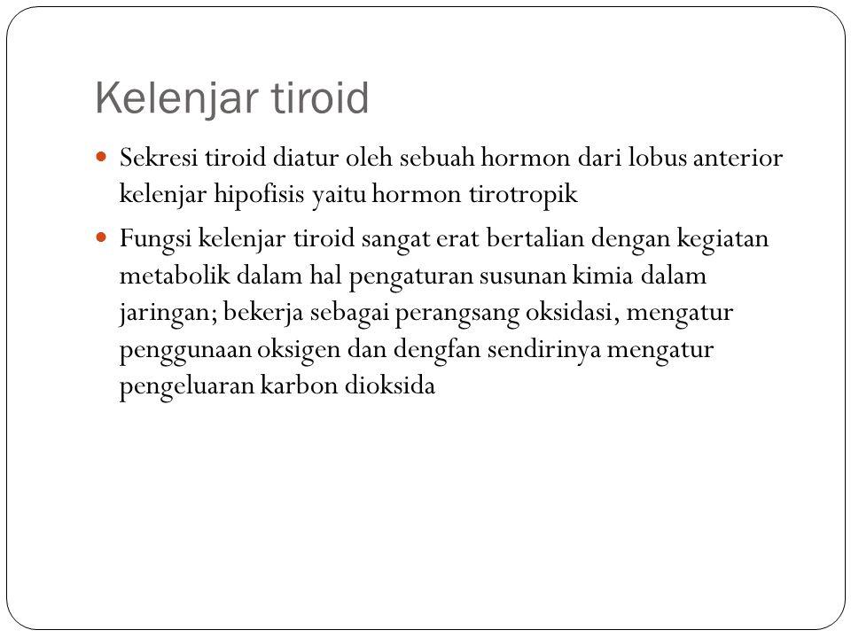 Kelenjar tiroid Sekresi tiroid diatur oleh sebuah hormon dari lobus anterior kelenjar hipofisis yaitu hormon tirotropik Fungsi kelenjar tiroid sangat