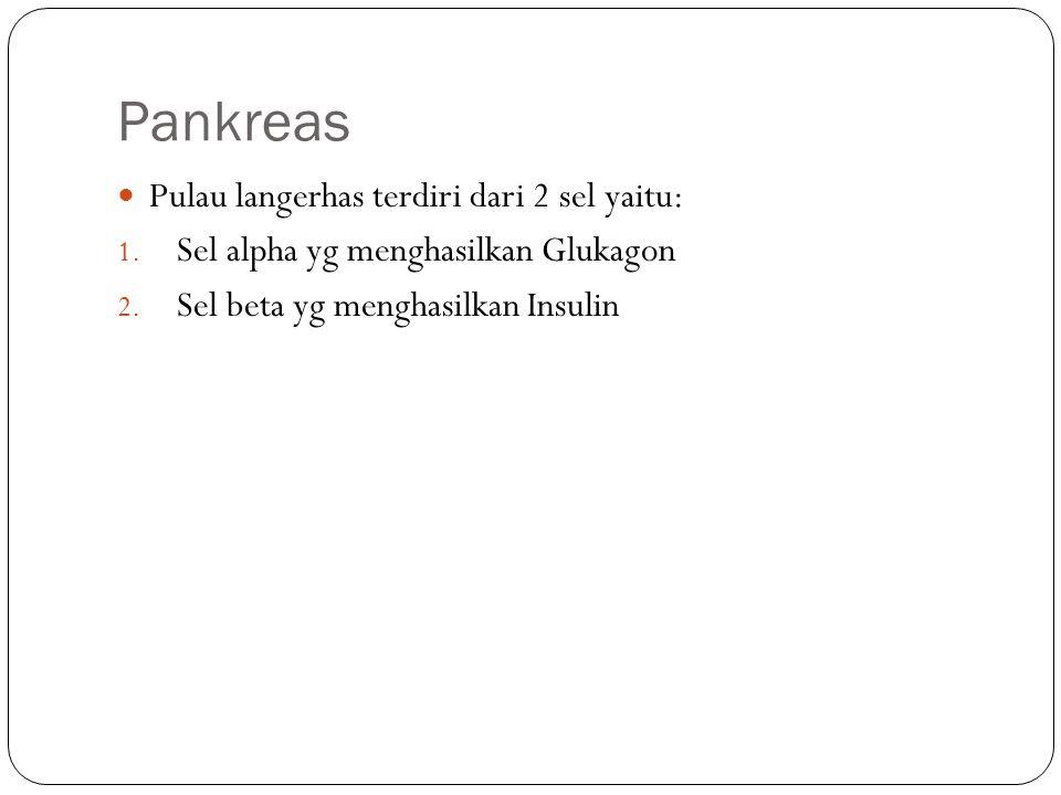 Pankreas Pulau langerhas terdiri dari 2 sel yaitu: 1. Sel alpha yg menghasilkan Glukagon 2. Sel beta yg menghasilkan Insulin