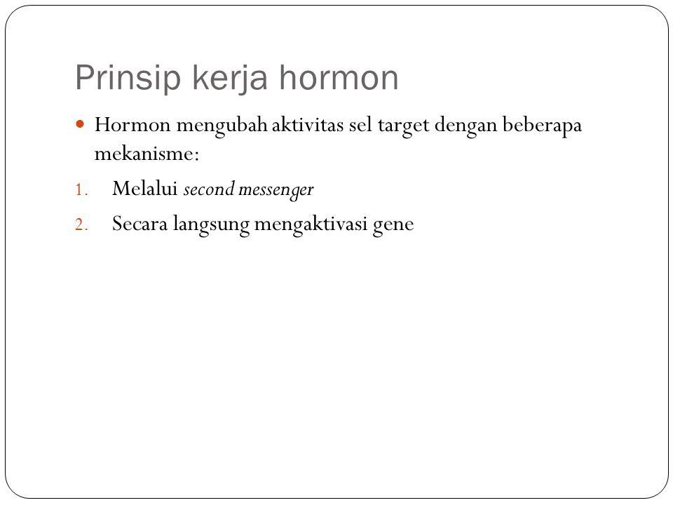 Prinsip kerja hormon Hormon mengubah aktivitas sel target dengan beberapa mekanisme: 1. Melalui second messenger 2. Secara langsung mengaktivasi gene