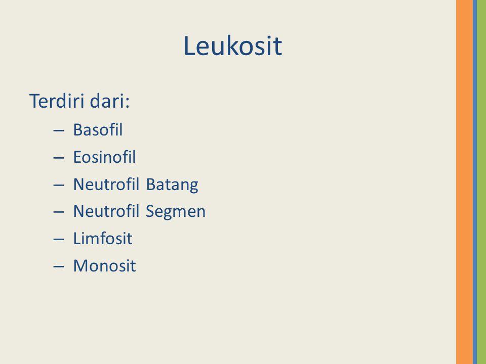Leukosit Terdiri dari: – Basofil – Eosinofil – Neutrofil Batang – Neutrofil Segmen – Limfosit – Monosit