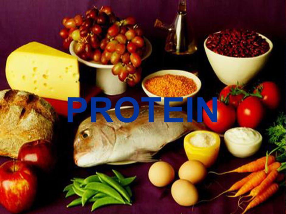 Sekuens: 1.Komposisi dan ciri-ciri protein 2.Struktur protein 3.Klasifikasi protein 4.Struktur asam amino 5.Sifat-sifat asam amino 6.Jenis-jenis asam amino 7.Asam amino dalam teknologi pangan 8.Kebutuhan protein tubuh 9.Fungsi protein bagi tubuh 10.Kandungan protein pada bahan pangan