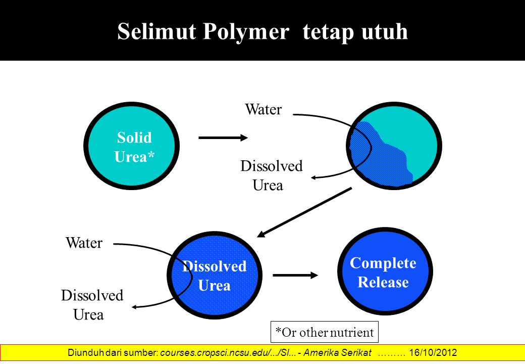 Selimut Polymer tetap utuh Water Dissolved Urea Solid Urea* Dissolved Urea Water Dissolved Urea Complete Release *Or other nutrient Diunduh dari sumbe