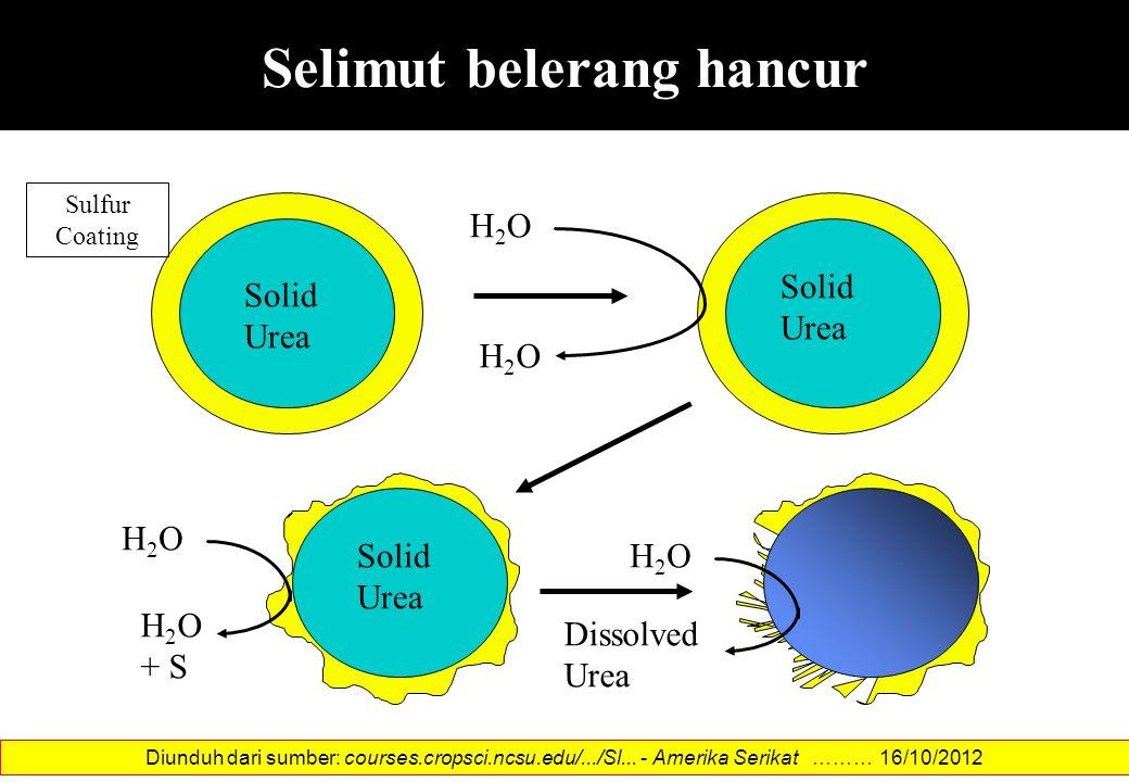 Selimut belerang hancur Solid Urea H2OH2O H2OH2O Solid Urea Solid Urea Sulfur Coating H2OH2O Dissolved Urea H2OH2O H 2 O + S Diunduh dari sumber: cour
