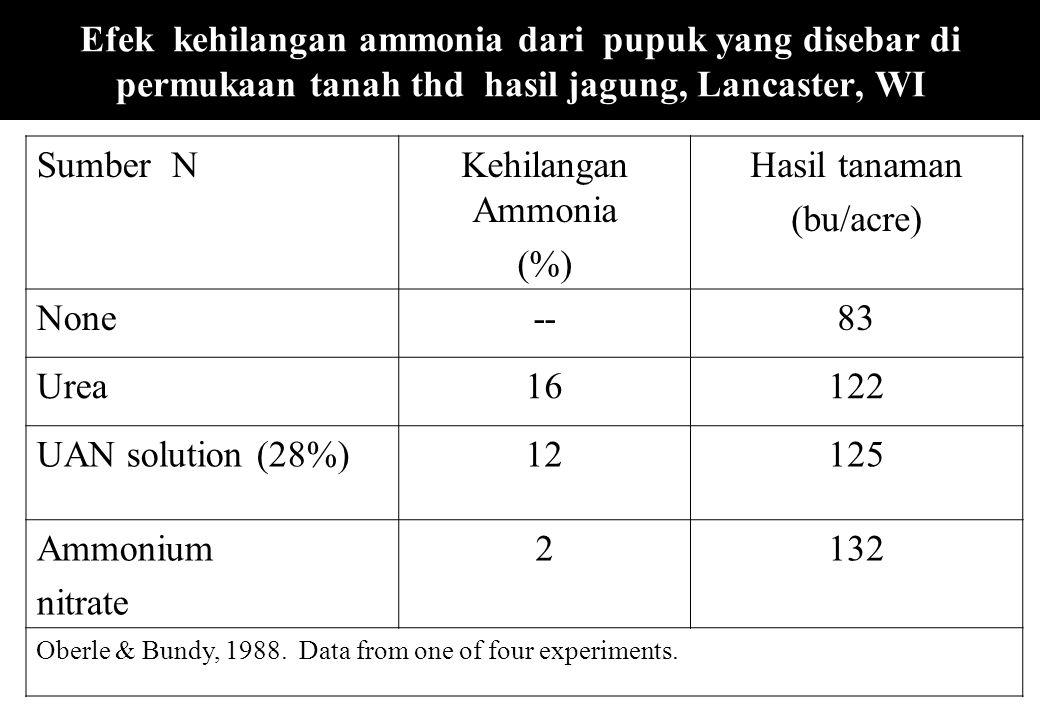 Efek kehilangan ammonia dari pupuk yang disebar di permukaan tanah thd hasil jagung, Lancaster, WI Sumber NKehilangan Ammonia (%) Hasil tanaman (bu/ac