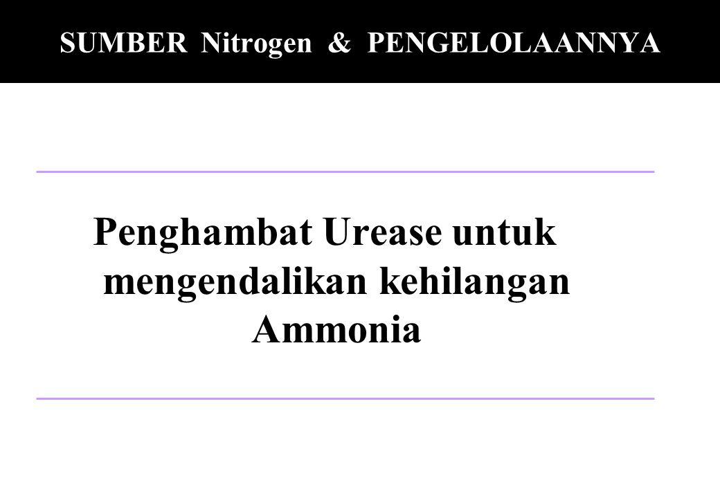 SUMBER Nitrogen & PENGELOLAANNYA Penghambat Urease untuk mengendalikan kehilangan Ammonia