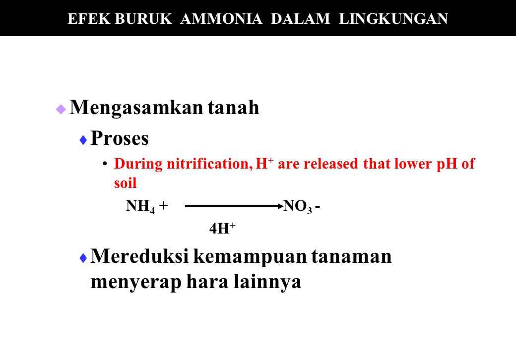   Mengasamkan tanah   Proses During nitrification, H + are released that lower pH of soil NH 4 + NO 3 - 4H +   Mereduksi kemampuan tanaman menye