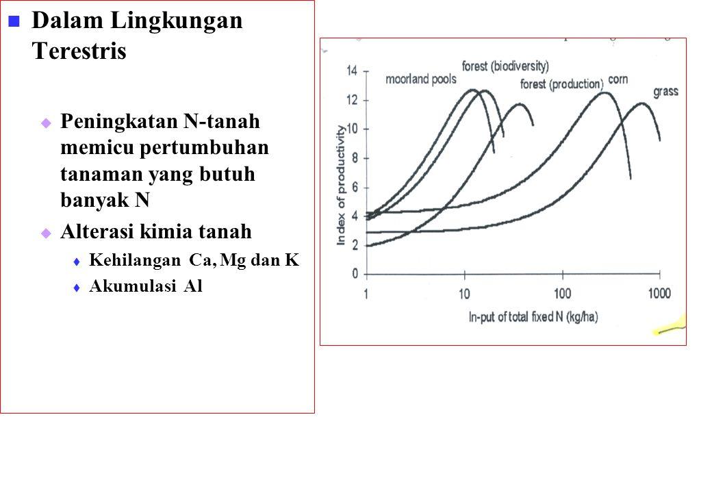 Dalam Lingkungan Terestris   Peningkatan N-tanah memicu pertumbuhan tanaman yang butuh banyak N   Alterasi kimia tanah   Kehilangan Ca, Mg dan K