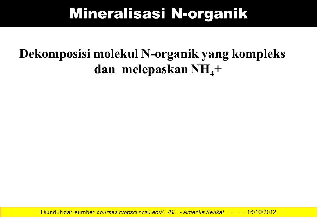 Mineralisasi N-organik Dekomposisi molekul N-organik yang kompleks dan melepaskan NH 4 + Diunduh dari sumber: courses.cropsci.ncsu.edu/.../Sl... - Ame