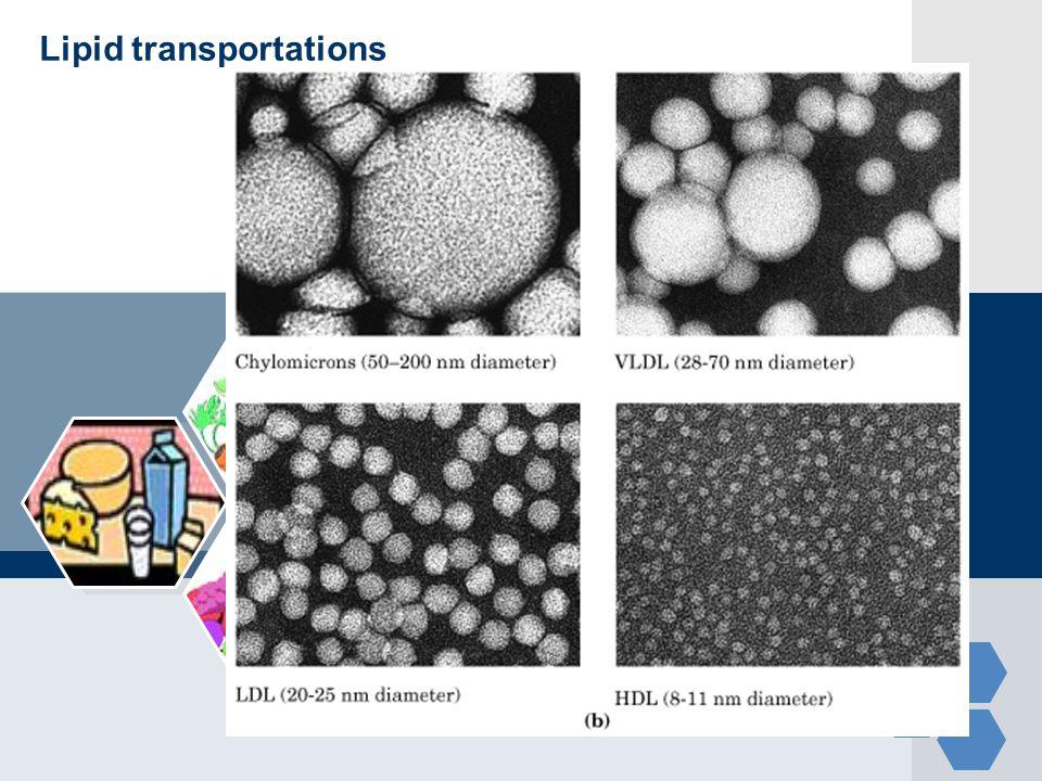 Lipid transportations