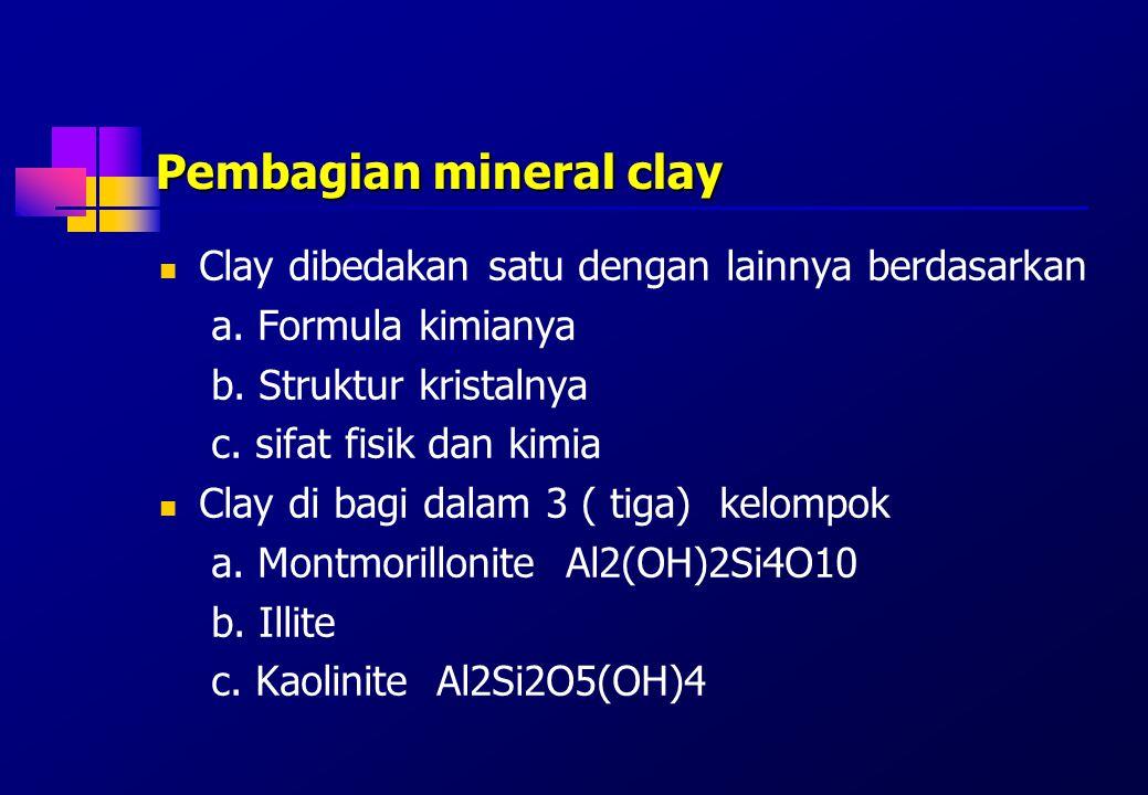 Clay Sebagian besar clay mengandung kation Na, K, Mg, Ca dan Fe Kation-kation tersebut di ikat oleh clay agar tidak terlindikan oleh air hujan, sehingga tetap dalam tanah sebagai nutrien tanaman.