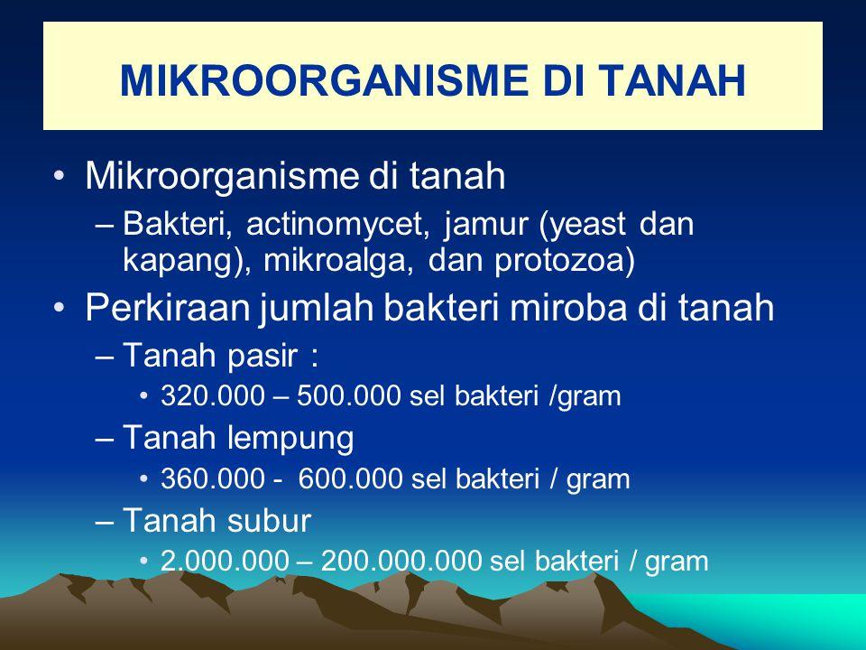 MIKROORGANISME DI TANAH Mikroorganisme di tanah –Bakteri, actinomycet, jamur (yeast dan kapang), mikroalga, dan protozoa) Perkiraan jumlah bakteri mir